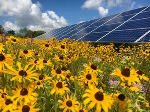Largest Solar Project in our State – It's a BigDeal